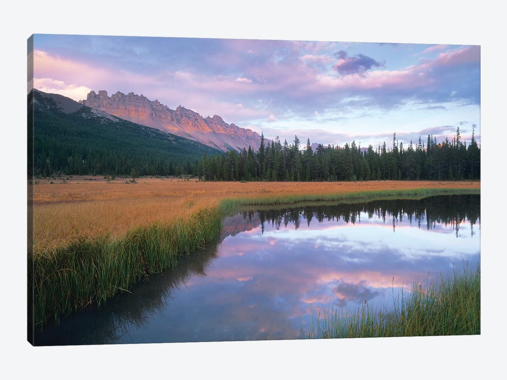 Dolomite Peak And Bow River Backwaters, Banff National Park, Alberta, Canada by Tim Fitzharris 1-piece Canvas Artwork