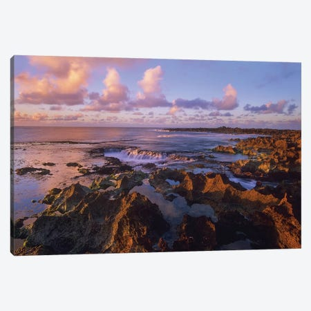 Dusk At Shark's Cove, Oahu, Hawaii Canvas Print #TFI317} by Tim Fitzharris Canvas Art Print