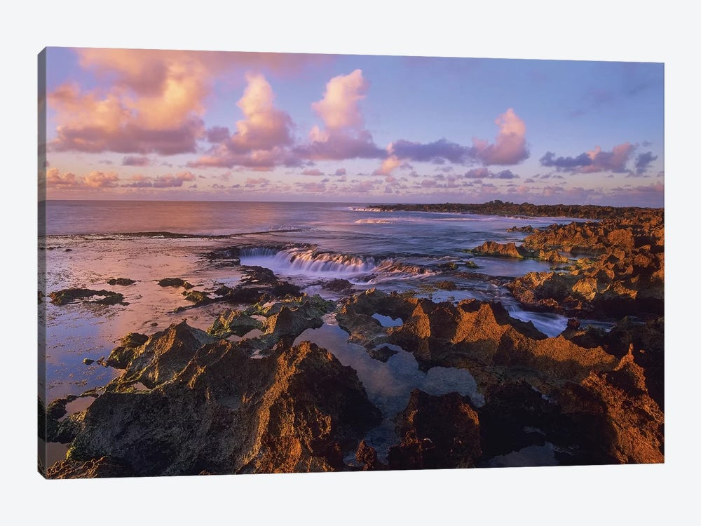 Dusk At Shark's Cove, Oahu, Hawaii by Tim Fitzharris 1-piece Canvas Wall Art