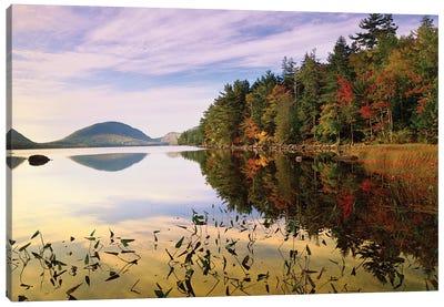 Eagle Lake, Mount Desert Island, Acadia National Park, Maine Canvas Art Print