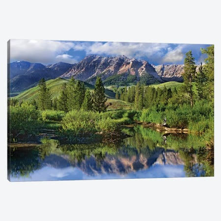 Easely Peak, Sawtooth National Recreation Area, Idaho Canvas Print #TFI321} by Tim Fitzharris Art Print