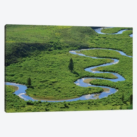 East River Meandering Near Crested Butte, Colorado Canvas Print #TFI327} by Tim Fitzharris Canvas Art