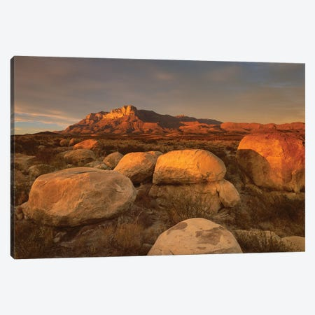 El Capitan, Guadalupe Mountains National Park, Texas I Canvas Print #TFI336} by Tim Fitzharris Art Print