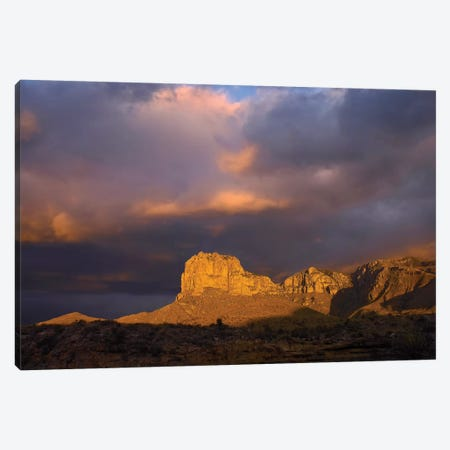 El Capitan, Guadalupe Mountains National Park, Texas III Canvas Print #TFI338} by Tim Fitzharris Canvas Art