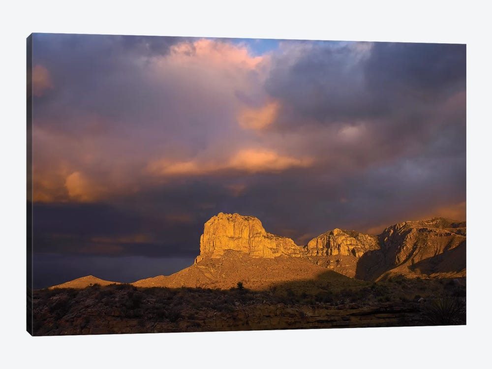 El Capitan, Guadalupe Mountains National Park, Texas III by Tim Fitzharris 1-piece Canvas Art Print
