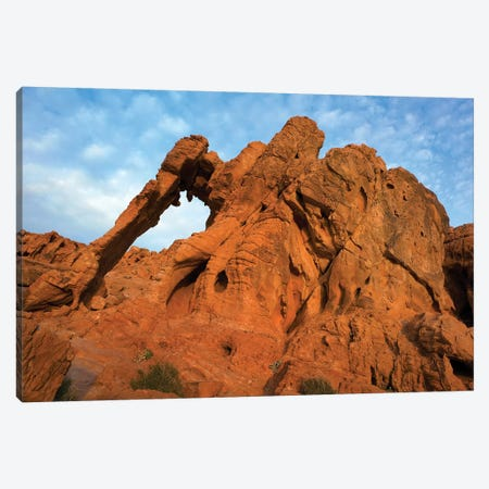 Elephant Rock, A Unique Sandstone Formation, Valley Of Fire State Park, Nevada Canvas Print #TFI340} by Tim Fitzharris Canvas Print