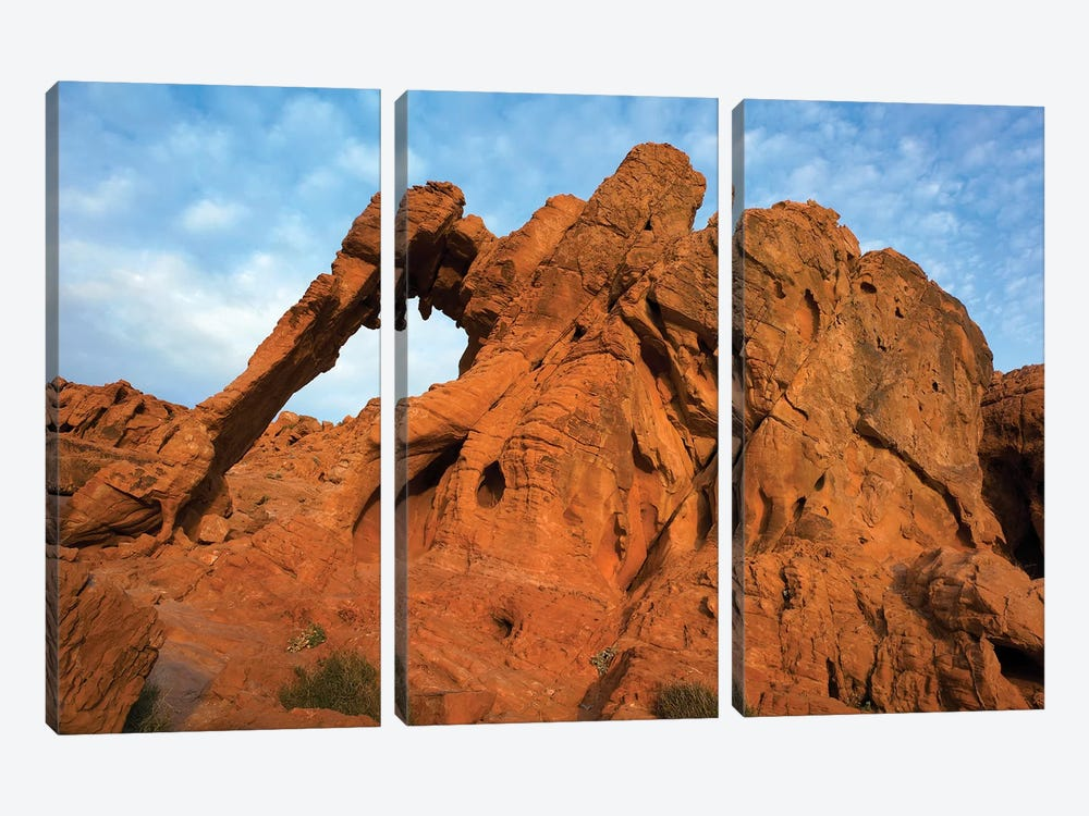 Elephant Rock, A Unique Sandstone Formation, Valley Of Fire State Park, Nevada by Tim Fitzharris 3-piece Canvas Wall Art