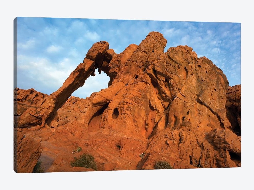 Elephant Rock, A Unique Sandstone Formation, Valley Of Fire State Park, Nevada by Tim Fitzharris 1-piece Canvas Art