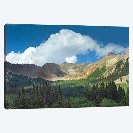 Elk Mountains Near Crested Butte, Colorado Canvas Print #TFI343} by Tim Fitzharris Canvas Art Print
