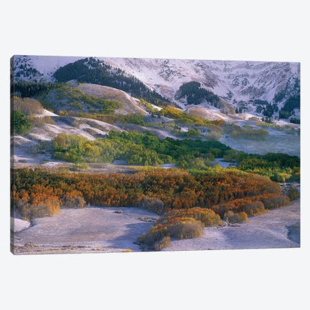 Elk Mountains With Dusting Of Snow, Colorado Canvas Print #TFI344} by Tim Fitzharris Canvas Wall Art