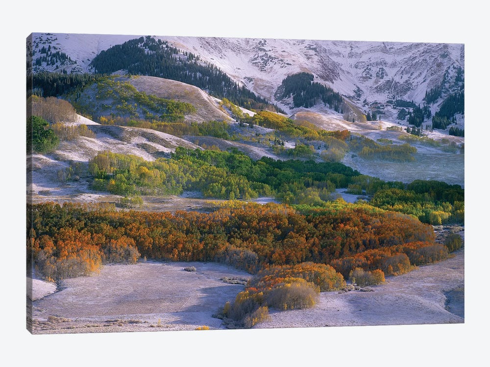Elk Mountains With Dusting Of Snow, Colorado by Tim Fitzharris 1-piece Canvas Art