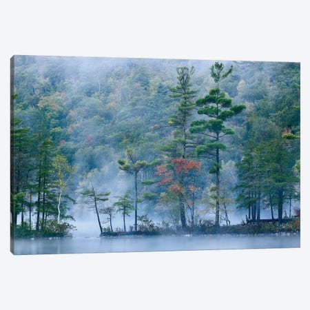Emerald Lake In Fog, Emerald Lake State Park, Vermont Canvas Print #TFI345} by Tim Fitzharris Canvas Wall Art