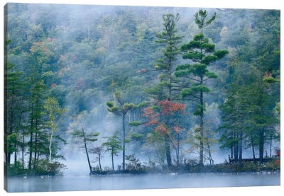 Emerald Lake In Fog, Emerald Lake State Park, Vermont Canvas Art Print
