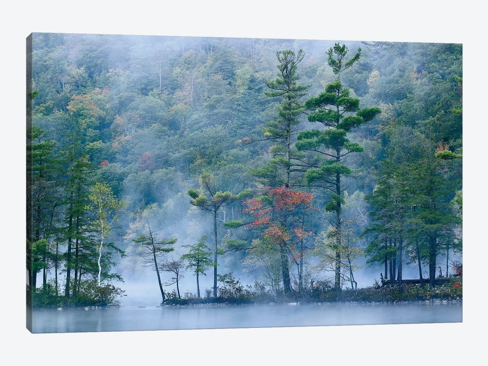 Emerald Lake In Fog, Emerald Lake State Park, Vermont by Tim Fitzharris 1-piece Art Print