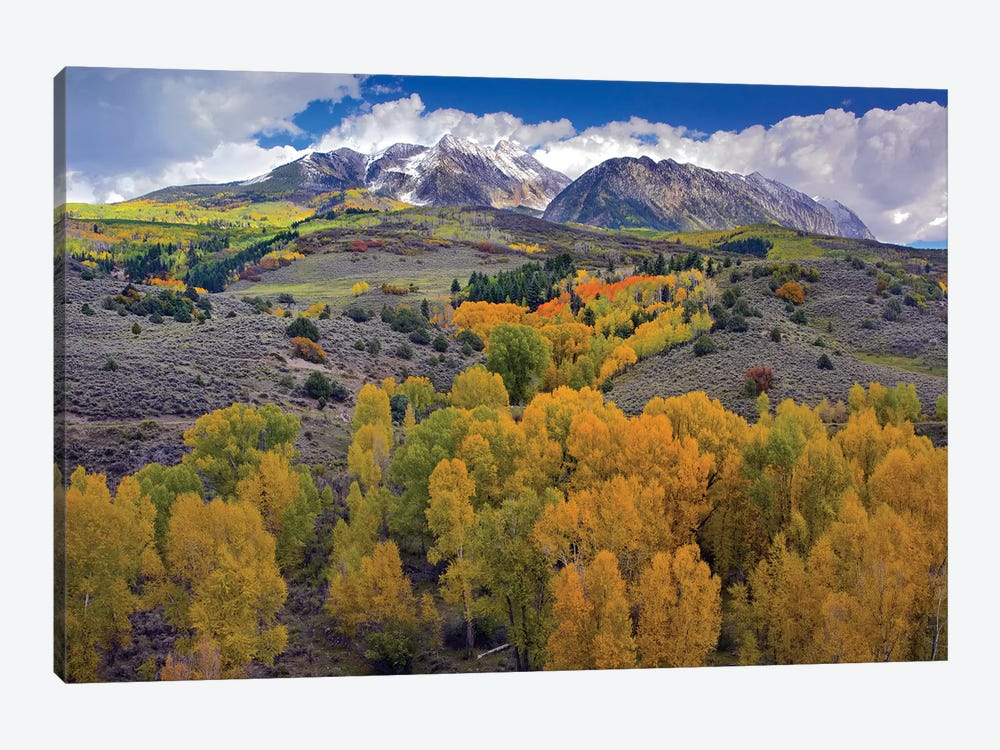 Fall Colors At Chair Mountain, Colorado by Tim Fitzharris 1-piece Canvas Print