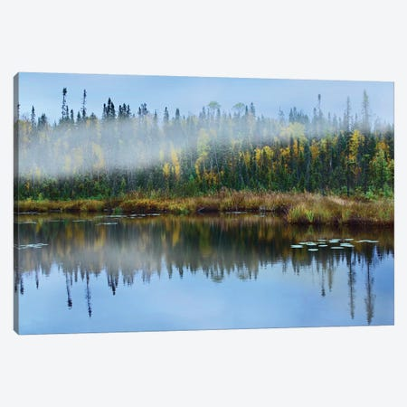Fog Over Lake, Ontario, Canada Canvas Print #TFI371} by Tim Fitzharris Canvas Artwork