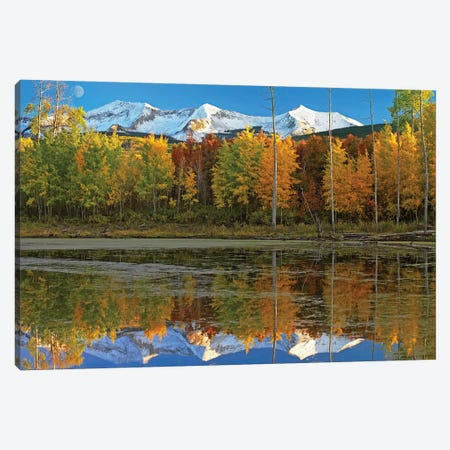 Full Moon Over East Beckwith Mountain Rising Above Fall Colored Aspen Forests, Colorado Canvas Print #TFI383} by Tim Fitzharris Canvas Art Print