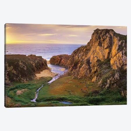 Garrapata Creek Flowing Into The Pacific Ocean, Garrapata State Beach, Big Sur, California Canvas Print #TFI388} by Tim Fitzharris Canvas Art Print
