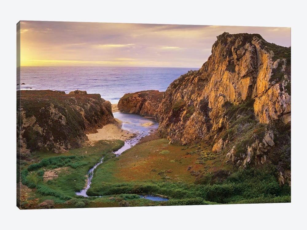 Garrapata Creek Flowing Into The Pacific Ocean, Garrapata State Beach, Big Sur, California by Tim Fitzharris 1-piece Canvas Wall Art