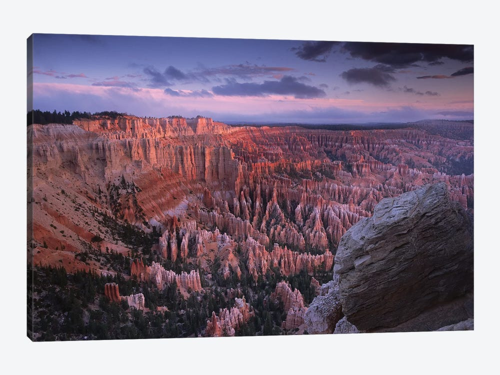 Amphitheater From Bryce Point, Bryce Canyon National Park, Utah by Tim Fitzharris 1-piece Canvas Print