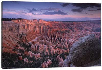 Amphitheater From Bryce Point, Bryce Canyon National Park, Utah Canvas Art Print