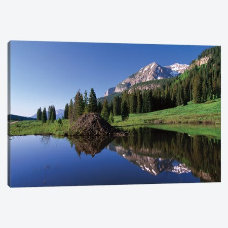 Gothic Mountain And Beaver Lodge, Near Crested Butte, Colorado Canvas Print #TFI397} by Tim Fitzharris Art Print