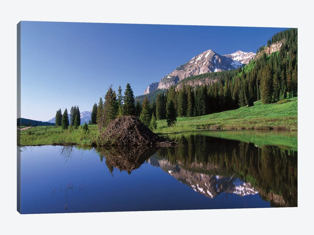 Gothic Mountain And Beaver Lodge, Near Crested Butte, Colorado by Tim Fitzharris 1-piece Canvas Wall Art