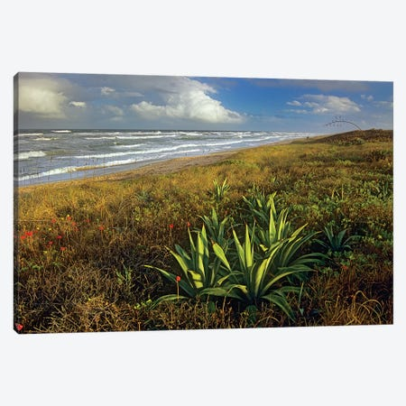 Apollo Beach At Canaveral National Seashore, Florida Canvas Print #TFI42} by Tim Fitzharris Canvas Art