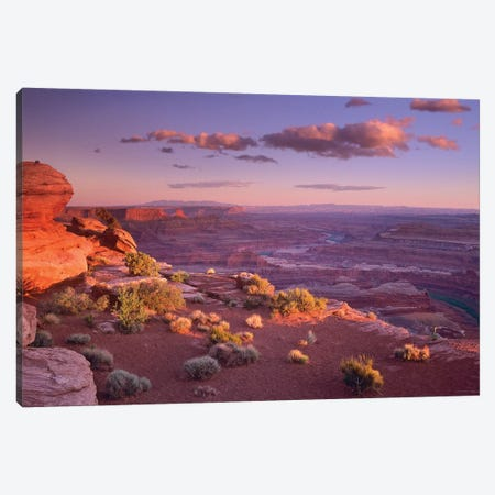 Green River Overlook, Canyonlands National Park, Utah Canvas Print #TFI434} by Tim Fitzharris Canvas Wall Art