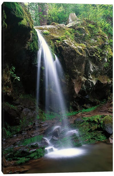 Grotto Falls With The Roaring Fork Motor Nature Trail Passing Beneath, Great Smoky Mountains National Park, Tennessee Canvas Art Print