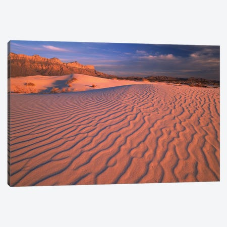 Gypsum Dunes, Guadalupe Mountains National Park, Texas Canvas Print #TFI452} by Tim Fitzharris Canvas Print