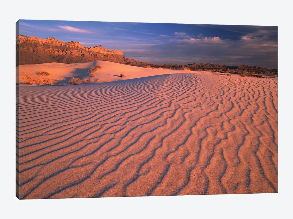 Gypsum Dunes, Guadalupe Mountains National Park, Texas 1-piece Canvas Art