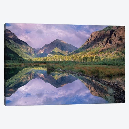 Handies Peak Reflected In Beaver Pond, Maroon Bells-Snowmass Wilderness Area, Colorado Canvas Print #TFI453} by Tim Fitzharris Canvas Art Print