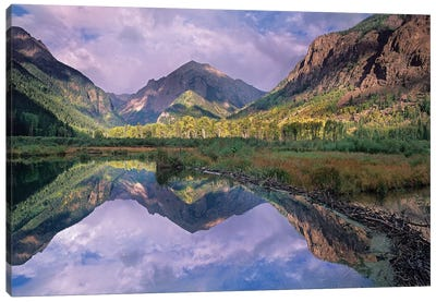Handies Peak Reflected In Beaver Pond, Maroon Bells-Snowmass Wilderness Area, Colorado Canvas Art Print