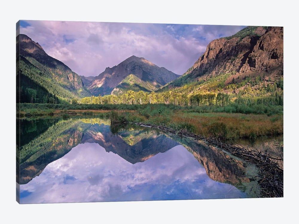 Handies Peak Reflected In Beaver Pond, Maroon Bells-Snowmass Wilderness Area, Colorado by Tim Fitzharris 1-piece Canvas Print