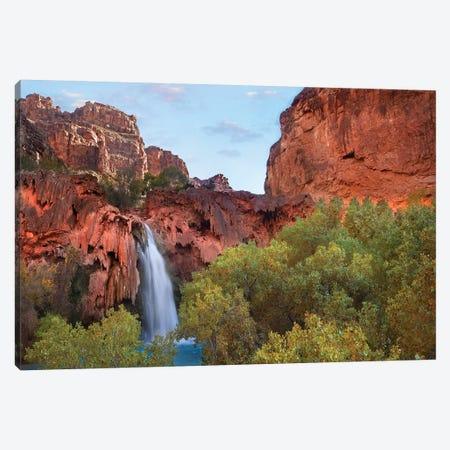 Havasu Falls, Grand Canyon, Arizona II Canvas Print #TFI457} by Tim Fitzharris Canvas Wall Art