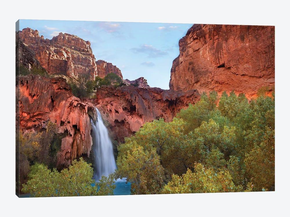 Havasu Falls, Grand Canyon, Arizona II by Tim Fitzharris 1-piece Canvas Print