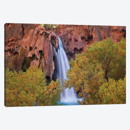 Havasu Falls, Grand Canyon, Arizona IV Canvas Print #TFI459} by Tim Fitzharris Canvas Print