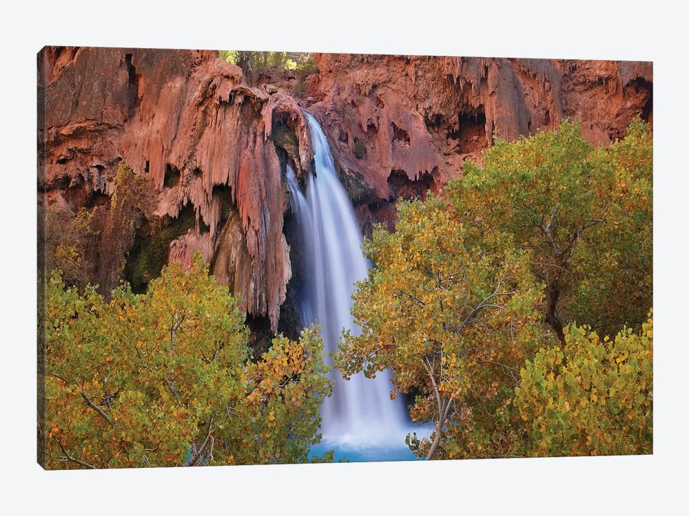 Havasu Falls, Grand Canyon, Arizona IV by Tim Fitzharris 1-piece Canvas Print