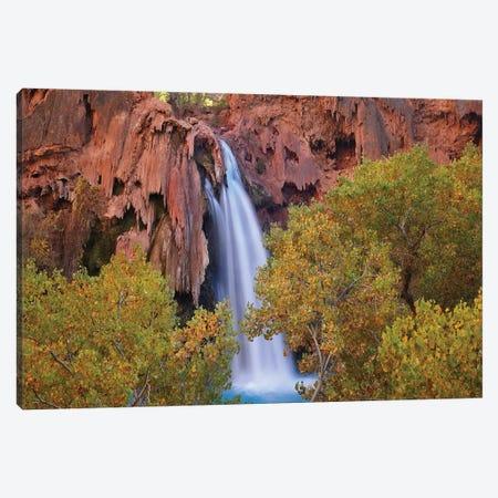 Havasu Falls, Grand Canyon, Arizona IV Canvas Print #TFI459} by Tim Fitzharris Canvas Print