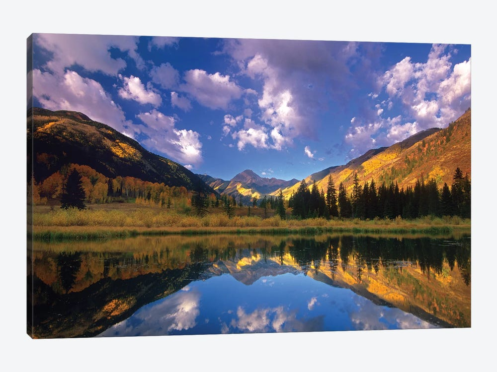 Haystack Mountain Reflected In Beaver Pond, Maroon Bells, Snowmass Wilderness, Colorado by Tim Fitzharris 1-piece Canvas Art