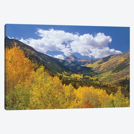 Haystack Mountain With Aspen Forest, Maroon Bells-Snowmass Wilderness, Colorado Canvas Print #TFI464} by Tim Fitzharris Canvas Art Print