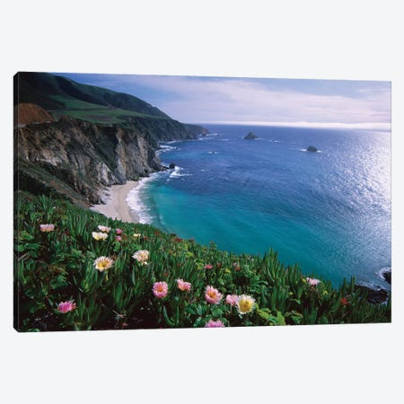Ice Plant, Big Sur Coast Near Bixby Creek, California Canvas Print #TFI475} by Tim Fitzharris Canvas Wall Art