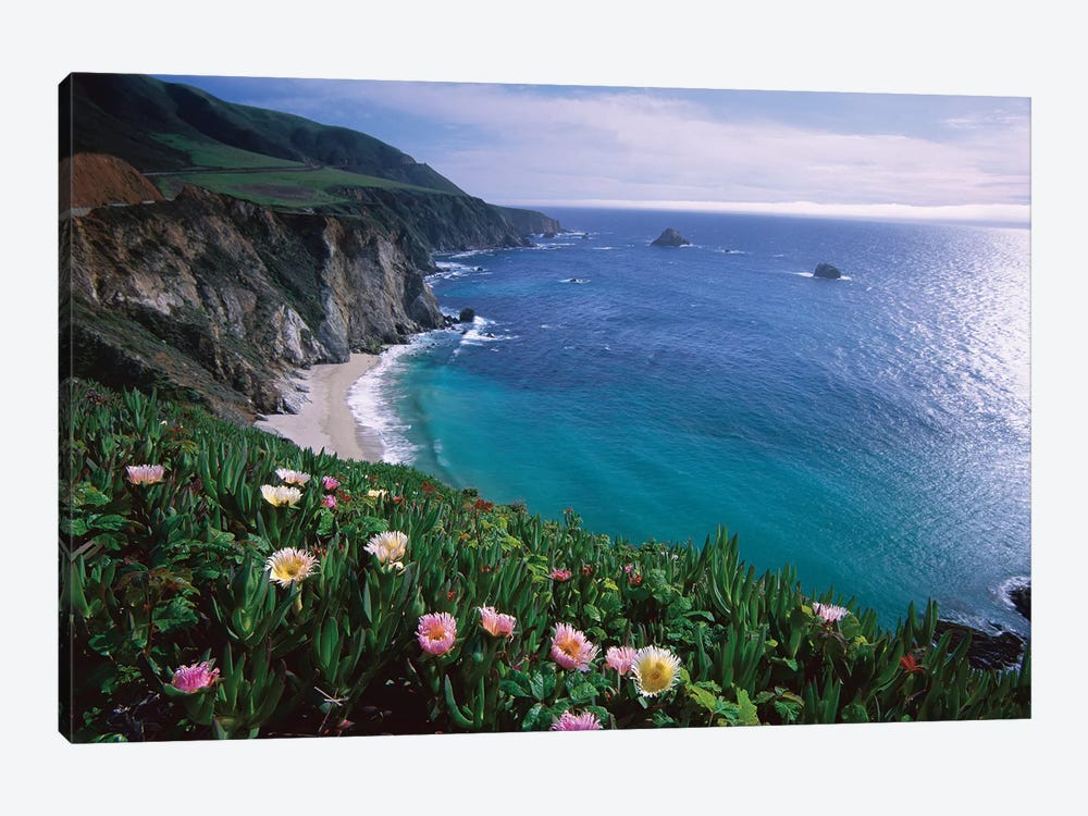 Ice Plant, Big Sur Coast Near Bixby Creek, California by Tim Fitzharris 1-piece Canvas Art Print