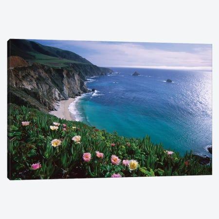 Ice Plant, Big Sur Coast Near Bixby Creek, California Canvas Print #TFI475} by Tim Fitzharris Canvas Wall Art