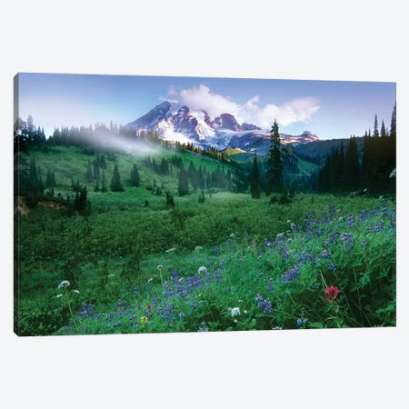 Incoming Fog On Mount Rainier, Mount Rainier National Park, Washington Canvas Print #TFI476} by Tim Fitzharris Canvas Artwork