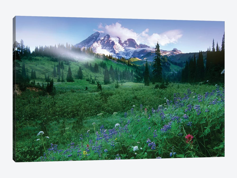 Incoming Fog On Mount Rainier, Mount Rainier National Park, Washington by Tim Fitzharris 1-piece Canvas Art