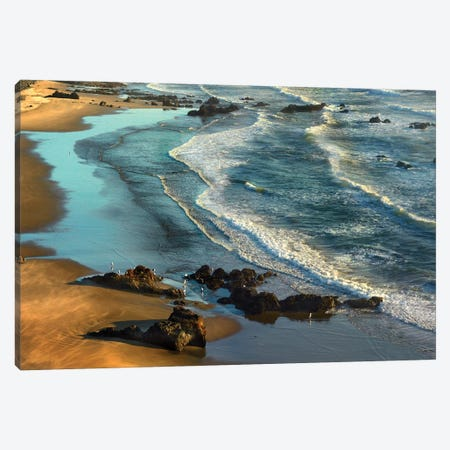 Incoming Waves At Bandon Beach, Oregon Canvas Print #TFI477} by Tim Fitzharris Canvas Wall Art