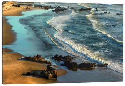 Incoming Waves At Bandon Beach, Oregon Canvas Art Print