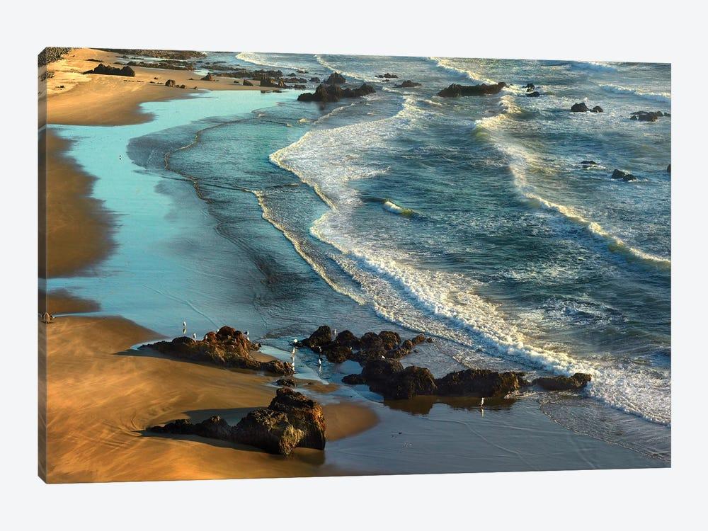 Incoming Waves At Bandon Beach, Oregon by Tim Fitzharris 1-piece Art Print